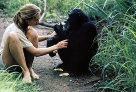 チンパンジーと女.jpg